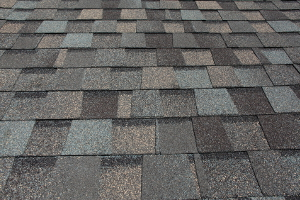 Asphalt Roofing Shingles in Wautoma